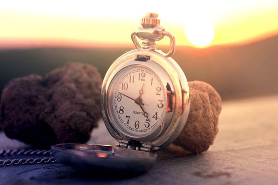Relógios, bolso, dial, cogumelos, trufas, sol, a corrente, a superfície Vetor