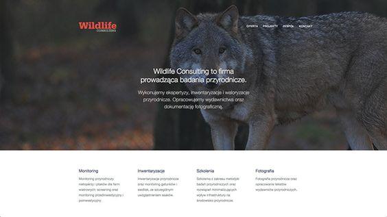 Wild Life Consulting by Maciek Chmielarski, via Behance
