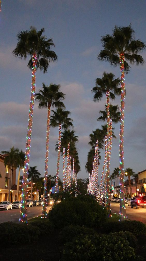 Christmas in Venice, FL