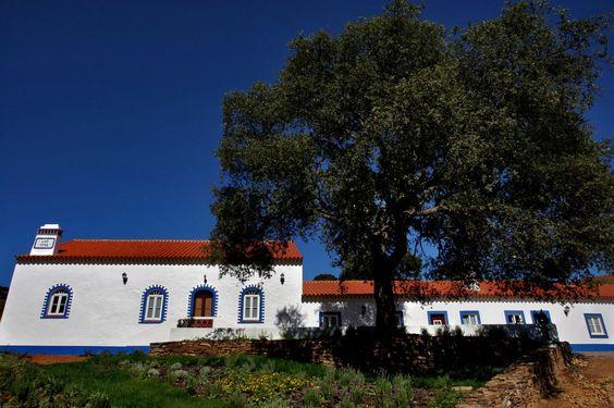 Galeria | Quinta do Chocalhinho