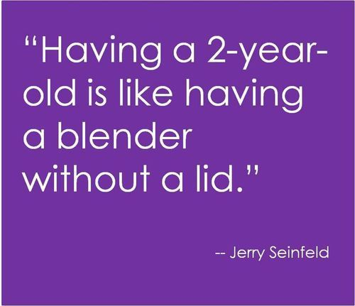 ;): Toddler Boy Quotes, Funny Toddler Quotes, My Life, 3 Years, 2 Year Olds, Funny Stuff, 1 Year Olds, 3 Year Olds, Jerry Seinfeld