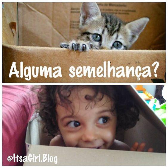#ferias #curtindoasferias #itsagirl  #OMundodeJulia #baby #happy #funny #love #cute #infancialivre #fofura #fofuradodia #babygirl #cutebaby #toddler #toddlerlife #brincandoeaprendendo #brincadeiradecriançalivre #infâncialivre #kitty #babycat #kittyinthebox #gatonacaixa