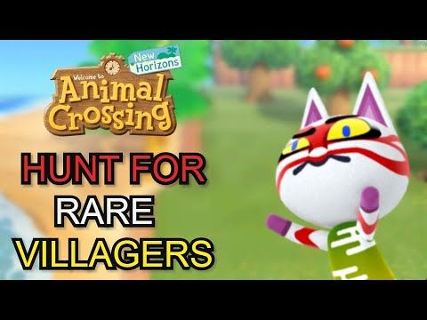 Finding A Rare Villager Animal Crossing New Horizons Youtube Animal Crossing New Animal Crossing Animals