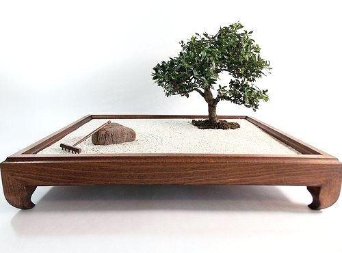 Bonsai Zen Garden