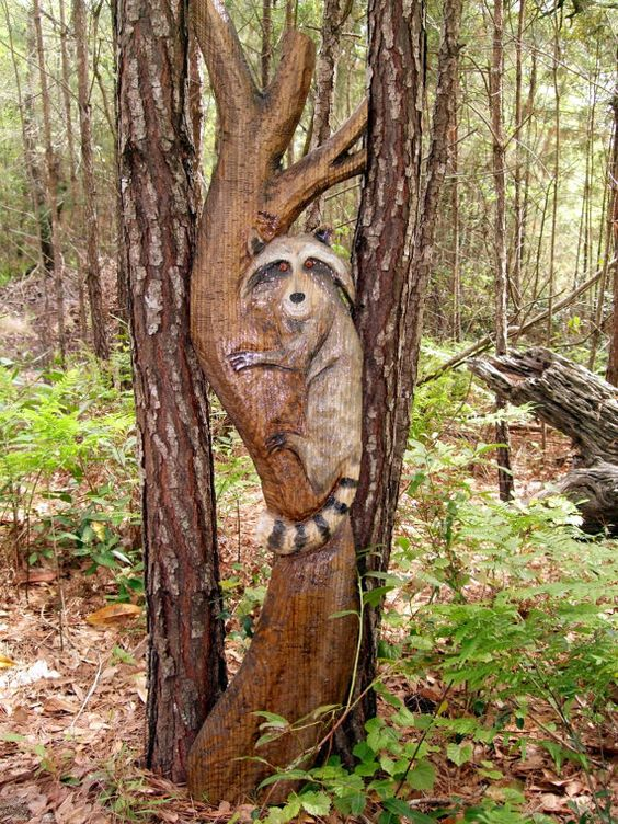 Raccoon in tree foot tall chainsaw wood carving by