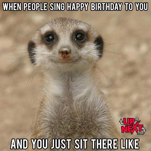 Funny Happy Birthday Celebration Memes Funny Happy Birthday Meme Funny Birthday Meme Happy Birthday Dancing