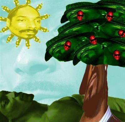 Scroll2Lol.com - Everything in this picture is Snoop Dogg.
