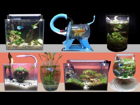 Top 22 Amazing Diy Aquarium Guppy Shrimp Betta Fish How To Make