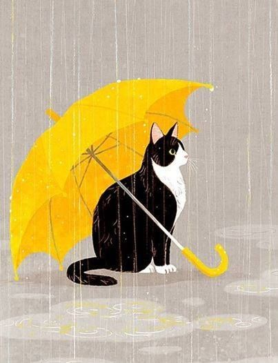 ❤WHAT A GREAT PLACE TO SIT AND WATCH IT RAIN …. PLUS THE FACT - HE WON'T GET WET……THE BEST OF ALL WORLDS…………ccp: