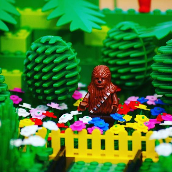 Another of my old photos. Chewie in the garden.  #lego #starwars #chewie #afol #bricknetwork #photos #photography #camera #legophoto #toyphoto #minifig #minifigures #photo #toy #brickphoto #brick #piece #micro #minifigure #bricktease #legos LEGO