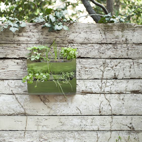 Add a modern wall planter to your outdoor space! Try the Dual Stainless Steel Wall Planter, a sleek planter made from high-quality stainless steel.