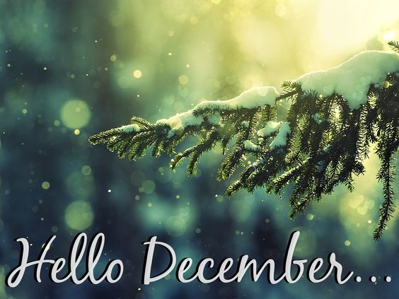 Hello December.png (PNG Image, 1600 × 1200 pixels) - Scaled (51%):