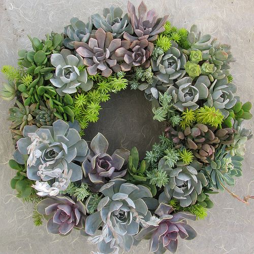 Succulent Wreath by Linda Estrin Garden Design - This would be amazing if I could keep my succulents alive...