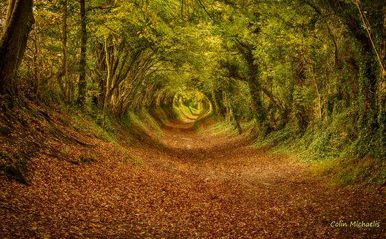 Halnaker, en West Sussex (Inglaterra)