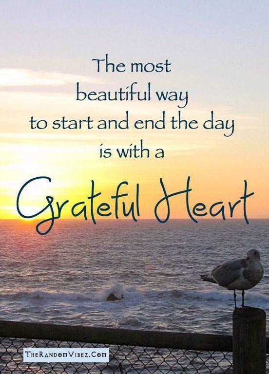Grateful Sayings : grateful, sayings, Inspiring, Attitude, Gratitude, Quotes,, Sayings, Images, Grateful, Quotes