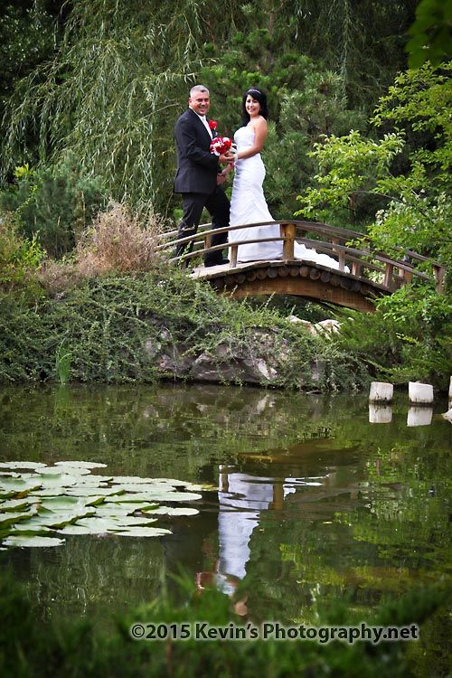 Albuquerque Bio Park Weddings June And Albinokevin S Photography New Mexico Botanical Gardens Wedding Venue Pinterest