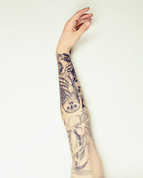 {birds sleeve} love that owl!