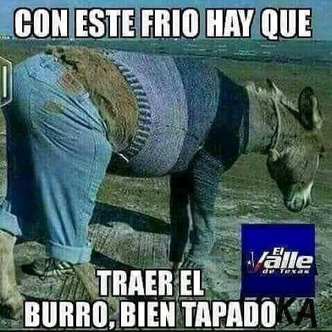 Pin By Ade Cardenas On Humor Humor Spanish Humor Ecards Funny