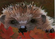 COPPERFIELD ART - ORIGINAL ACEO PAINTING - PEEKABOO HEDGEHOG IN AUTUMN LEAVES