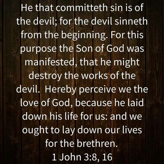 James Milne's Profile | The Bible App | Bible.com