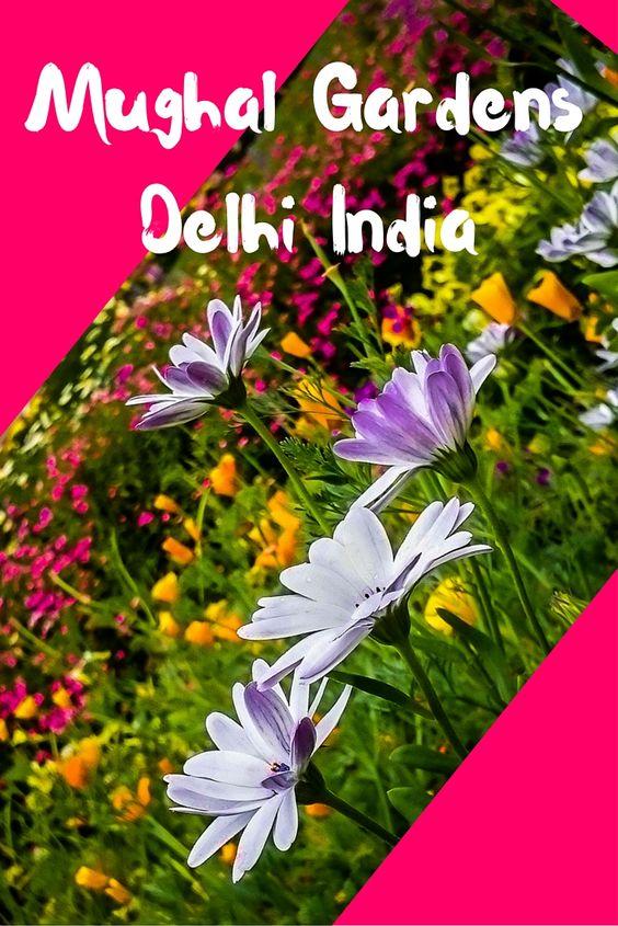 Visit to Mughal Garden Delhi