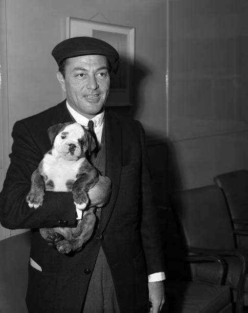 American Actor And Singer Tony Martin His New Bulldog Pup Boozer