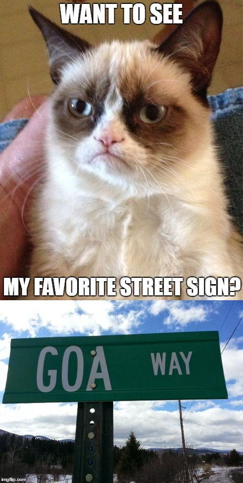 Well?  What did you expect? | WANT TO SEE MY FAVORITE STREET SIGN? | image tagged in memes,grumpy cat,funny,street signs,funny street signs,new feature | made w/ Imgflip meme maker