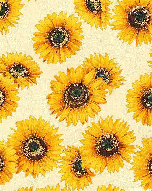 Sunflowers Sunflower Wallpaper Sunflower Art Sunflower