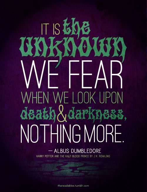 It is the unknown we fear when we look upon death  darkness, nothing more - Albus Dumbledore