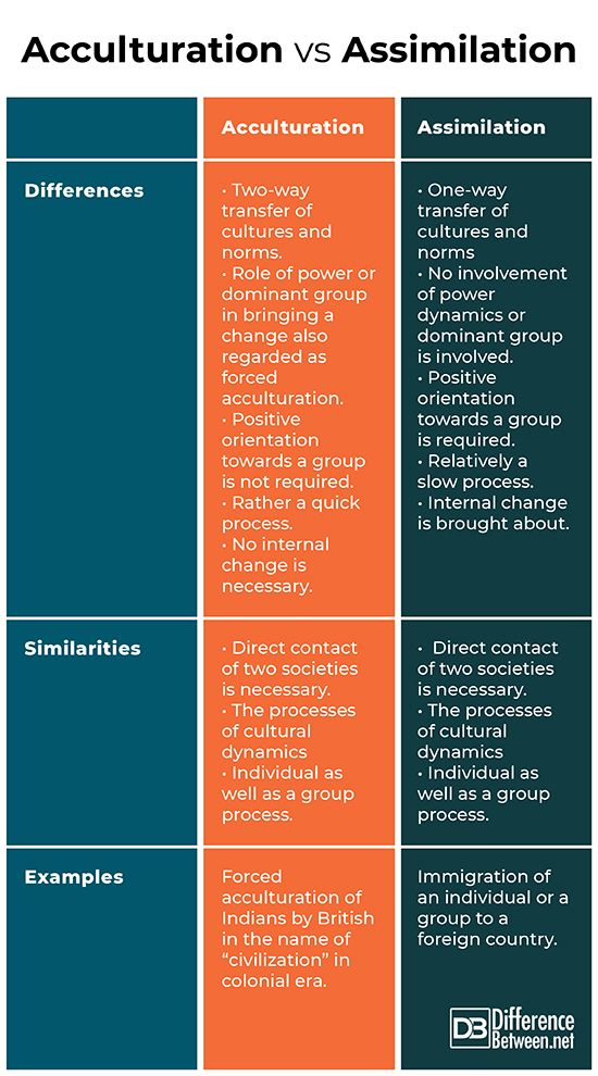 Difference Between Cultural Assimilation Intercultural Communication Social Institution