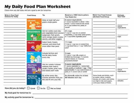 Food plan, My plate and Worksheets on Pinterest