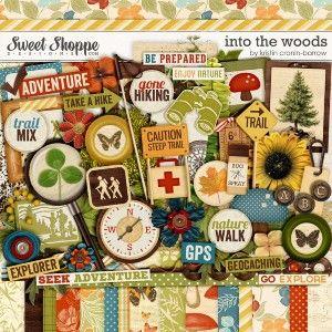 Into The Woods by Kristin Cronin-Barrow