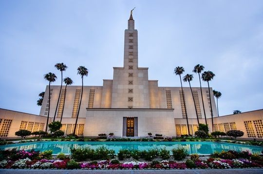Los Angeles California Temple Palm Trees And Garden Los Angeles California Los Angeles Temple Temple Pictures Lds Temples