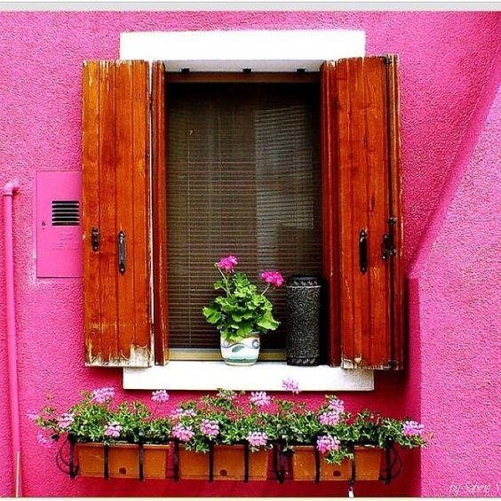 @decoremais #casa #cores #flores #jardim #desejo #detalhe #alegria #família #Padgram
