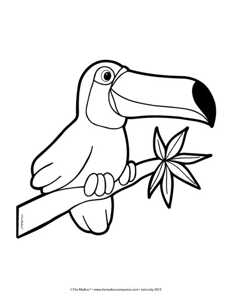 brazilian rainforest animals coloring pages - photo #41