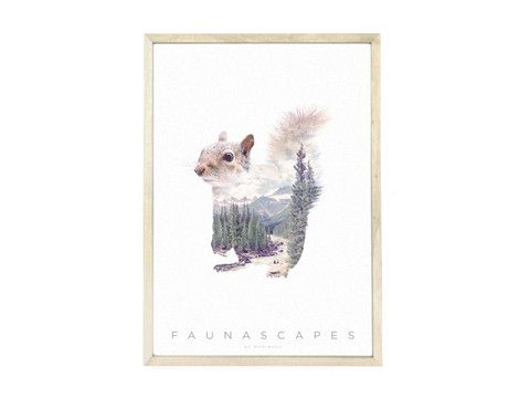 Faunascape a3 poster raccoon
