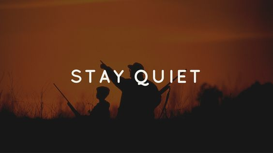 Hunting Strategies: Stay Quiet