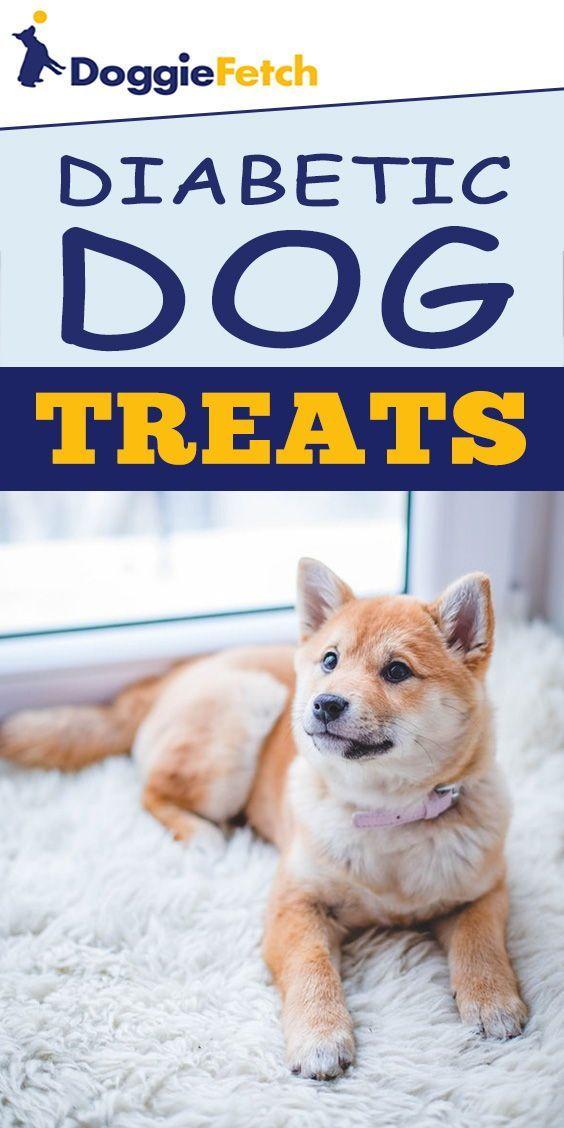 Best Diabetic Dog Food Recipe : diabetic, recipe, Diabetic, Treats, [2021], Doggiefetch, Doggy,