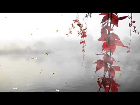 خلفية متحركة 4 Youtube Nature Gif Animated Gif Image