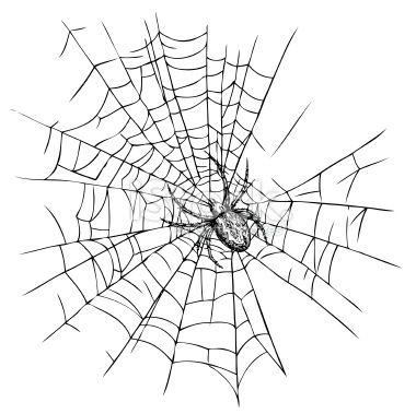 toile d 39 araign e araign e halloween dessin isol illustration vectorielle libre de droits. Black Bedroom Furniture Sets. Home Design Ideas