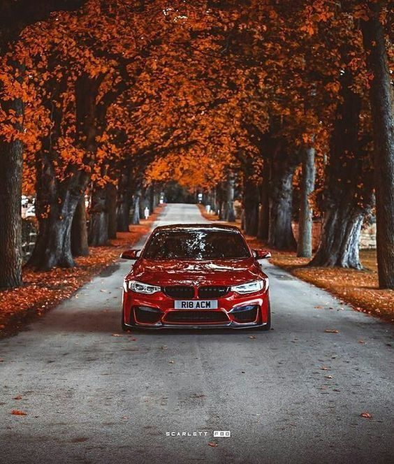 Bmw Good Picture Bmw Wallpapers Bmw Bmw Cars