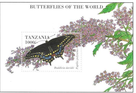 Tanzania - Butterflies, 1999 - S/S MNH