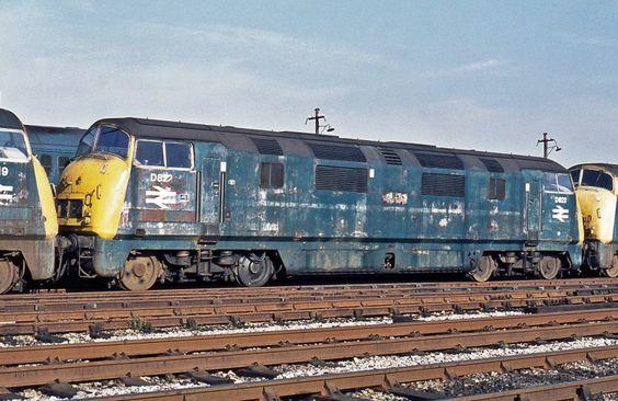 Railway Herald :: Imaging Centre :: D822 at St Philips Marsh