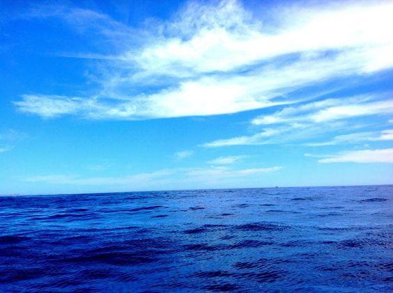 Pacífico, Los Cabos.