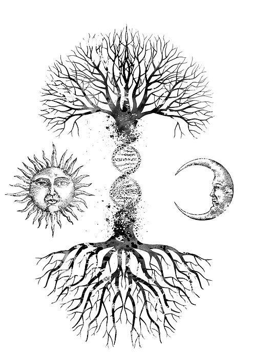 Dna Tree Biotechnology Tatuaje árbol De La Vida Dibujo De Arbol Tatuaje De árbol Para Hombres