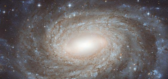 NGC 6384: Spiral Beyond the Stars