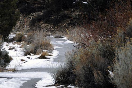 snowy path in Big Bear, California
