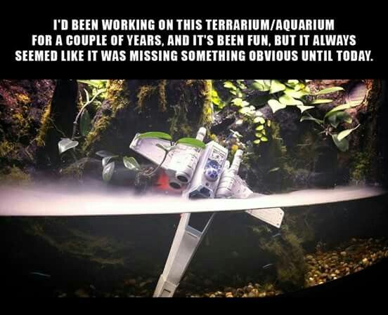 Star Wars Dagobah Aquarium (http://bit.ly/1W2LQrX)