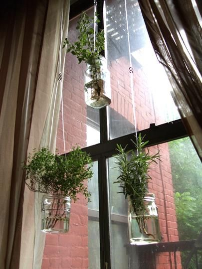 Diy recycled project floating herb garden diy plants for Window garden
