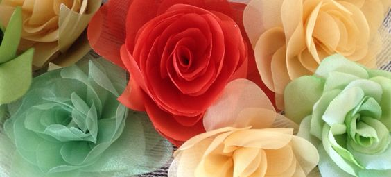 roses! by AureaMariz